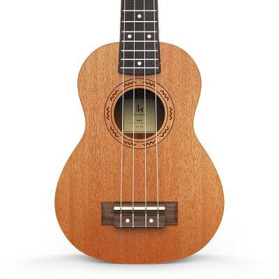 ukulele body
