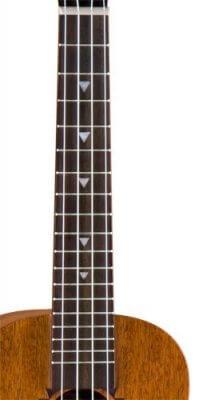 ukulele neck